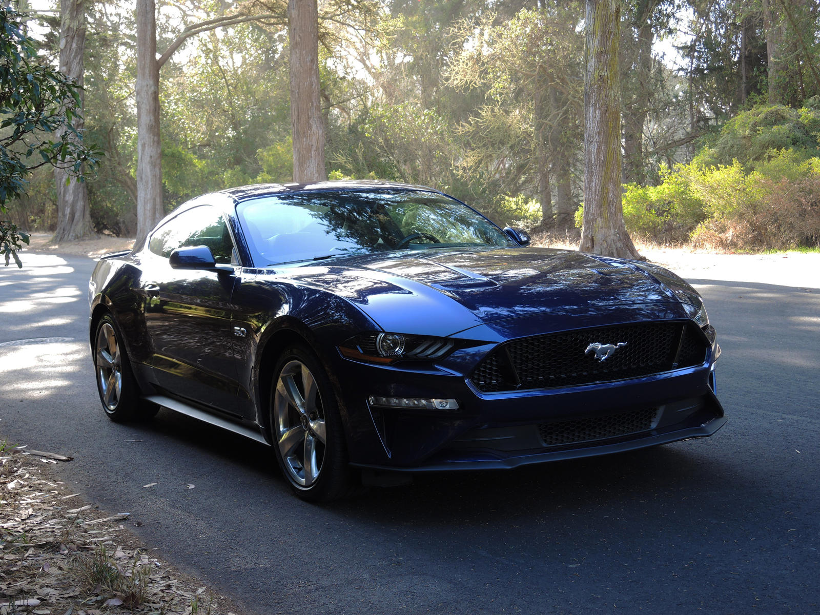 2020 Ford Mustang Gt Coupe Review