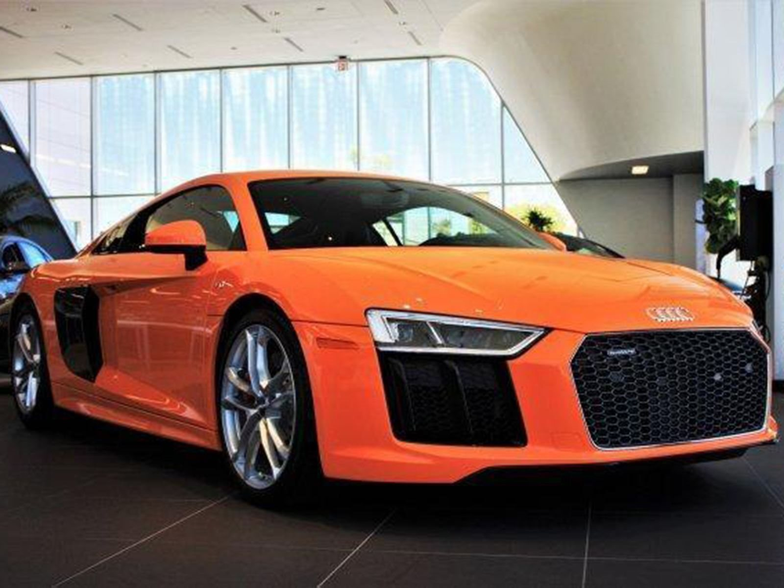 10 Audis That Show Why Custom Paint Is Always Best Carbuzz