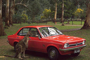 Volvo Takes On The Most Ruthless Killers On The Road: Kangaroos