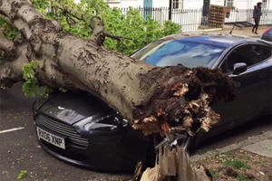 9 Horror Stories That Happened To Cars While Parked