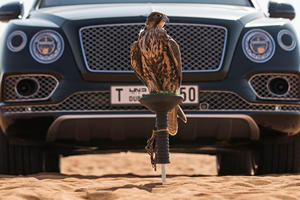 Mulliner Builds Unimaginably Useless Bentayga For World's Most Obscure Sport