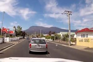 Watch A Jaywalking Chicken Cause A Car Accident