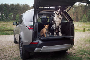 Land Rover Wants To Be The Number One Brand For Dog Owners