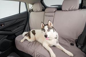 Subaru Releases New Pet-Friendly Accessories