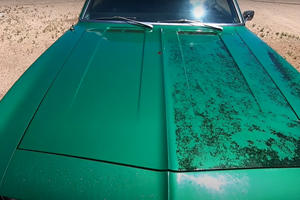 Watch This Camaro Get Its First Wash In 18 Years