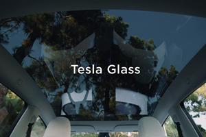No One Can Hear You Scream Inside A Tesla